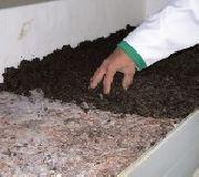 تهییه و تولید خاک پوششی و کمپوست قارچ