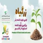 تولید کننده انواع گیاهان دارویی